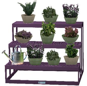 Lila növények kompozíciója