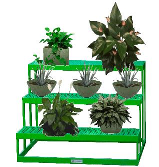 Szobatisztító növények kompozíciója
