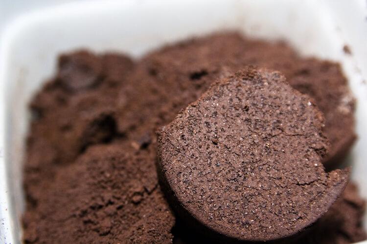 Kávézacc felhasználása a kertben: A 7 legjobb módszer (2019)