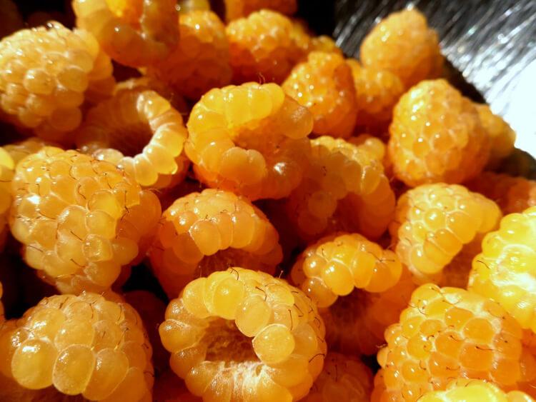 narancs málnák
