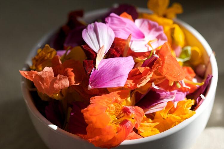 ehető virágok tálban