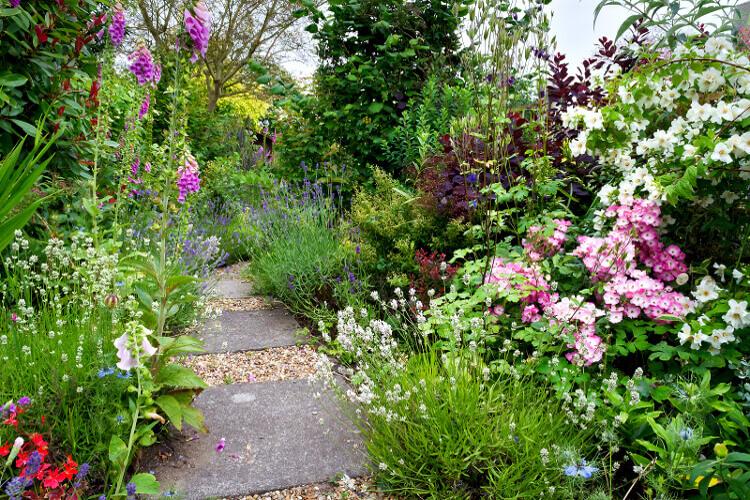 természetes kert kialakítása