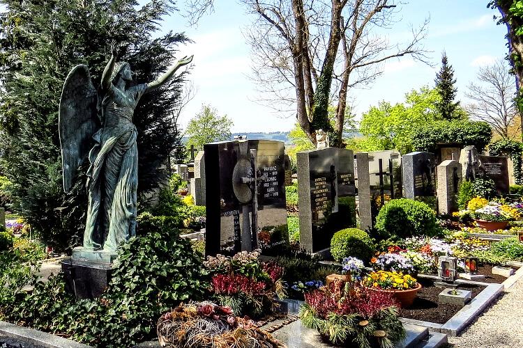 szárazságtűrő virágok temetőbe