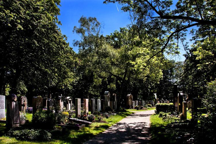 temetőbe való virágok