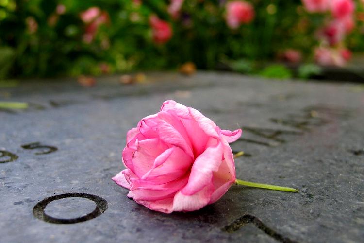 temetőbe virág
