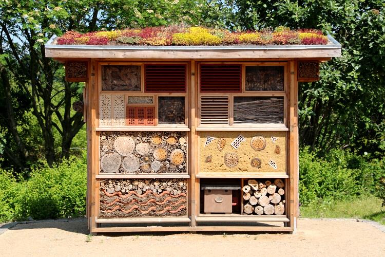 ház bogaraknak, rovaroknak