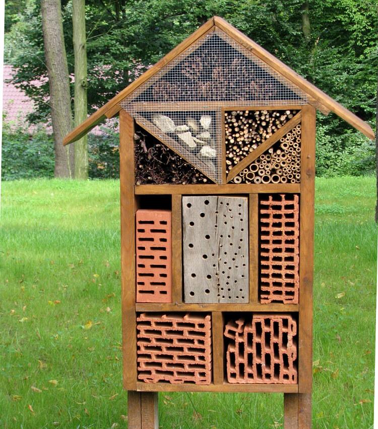 hasznos állatok a kertben