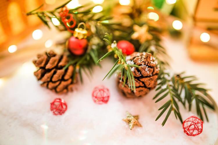 Karácsonyi dekoráció ötletek otthonodhoz – a kerted segítségével