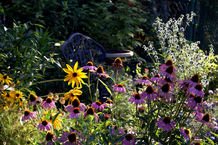pad a kertben