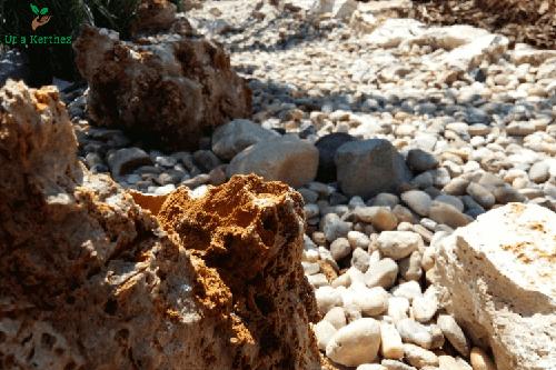 száraz patakmeder