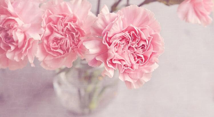 Vágott virág frissen tartása: A 12-pontos lista, ami segíteni fog