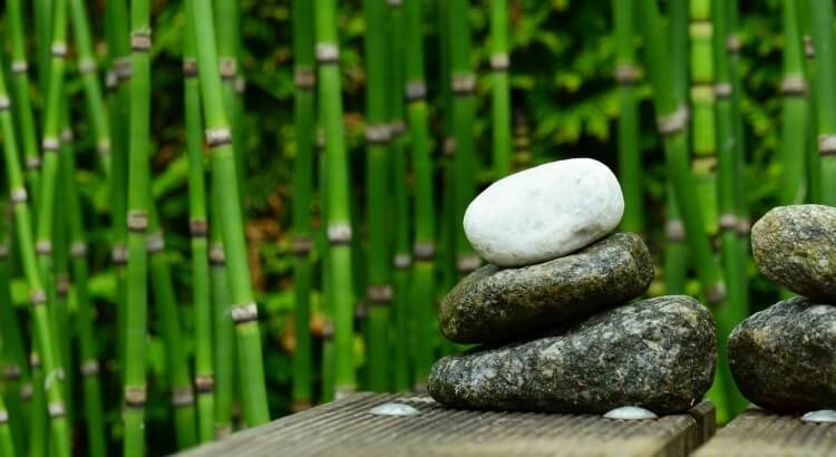 Különleges, egzotikus hatás a kertben vagy a teraszon – bambusszal