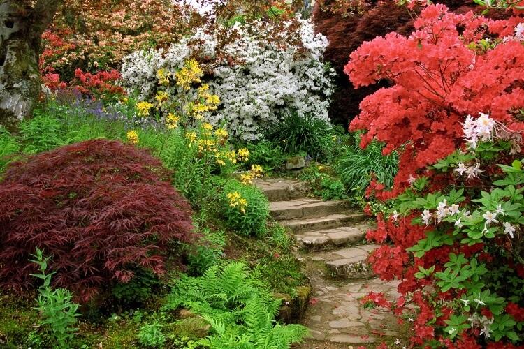 kertszépítés