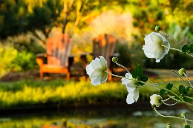 12 kertszépítő ötlet, amivel újra festheted kerted megfakult arcát
