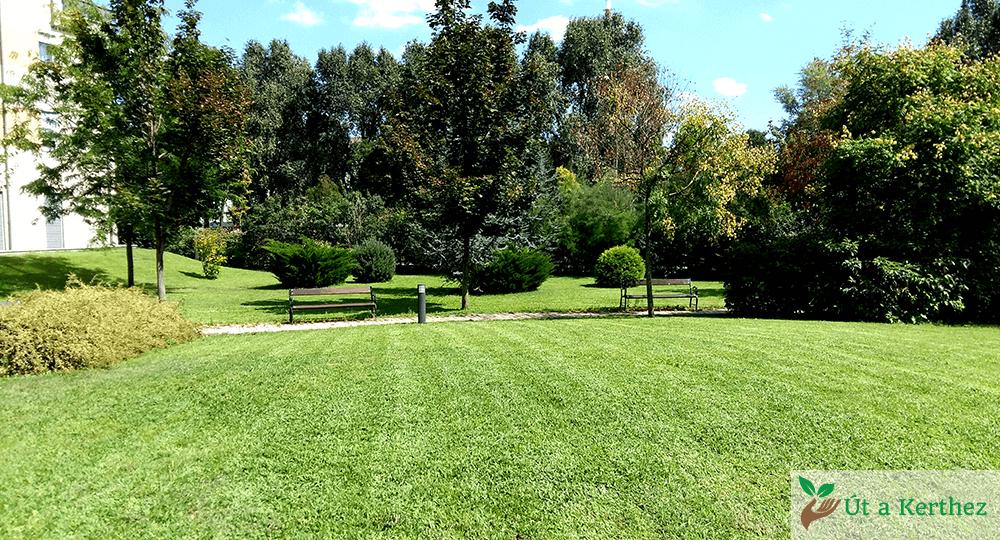 rendezett kert