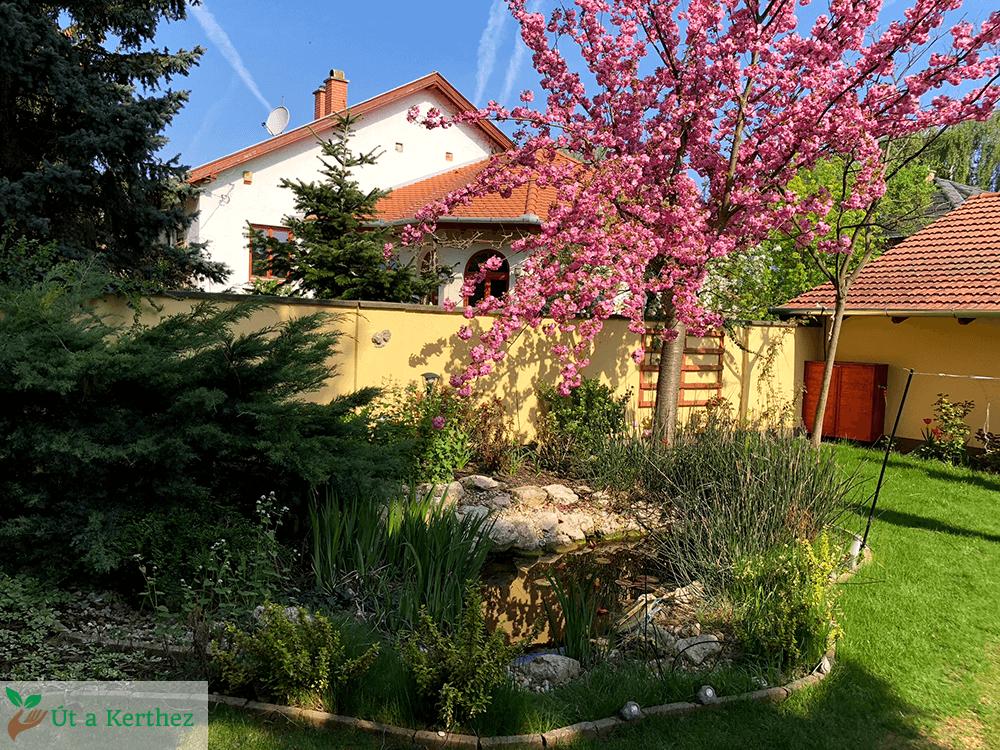 tavaszi munkák a kertben