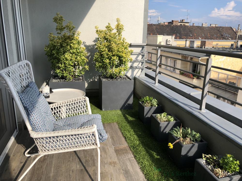 terasz, kaspók és növények
