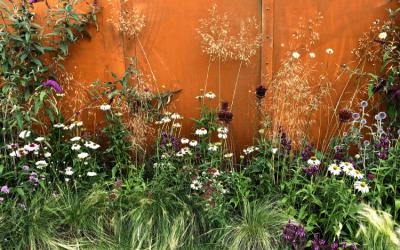 Kert trendek 2019: A jövőbeli stílusirányzatok – kert designer szemmel